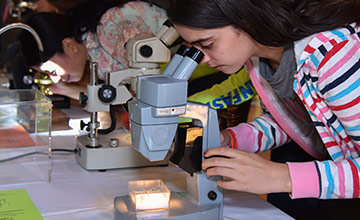 A girl is looking through the microscope